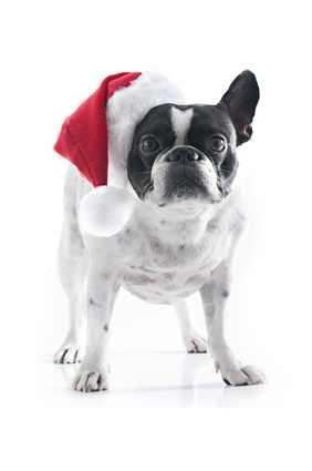 Weihnachtslügen